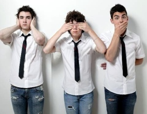 The-Jonas-Brothers-the-jonas-brothers-jb-29554606-480-373